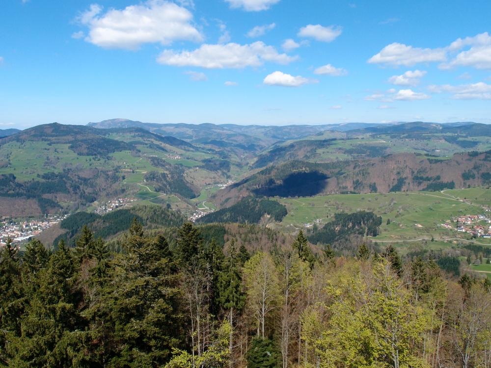 Goodbye Schwarzwald