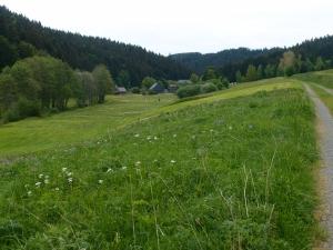 Unten links im Bild steht die Effelter Mühle mitten im Tal und mitten im Funkloch, Balsam für die Seele. Links unterhalb der Mühlengebäude seht ihr das Camp.