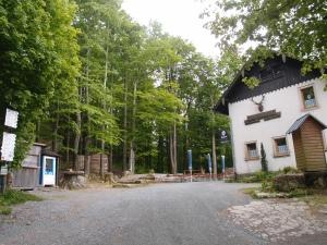 Mittag mitten im Wald, noch bei ganz gutem Wetter