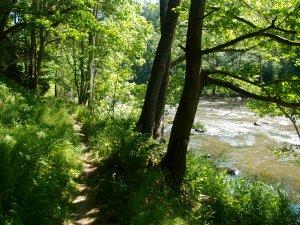 Wunderschöner Trampelpfad entlang des Flusses! Noch ist der Weg hervorragend auszumachen...
