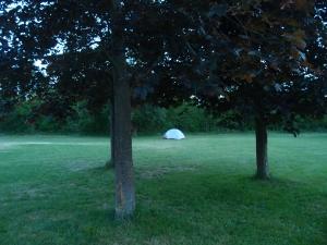 Eine Wiese, ein Zelt, ringsum Natur - gute Nacht :-)
