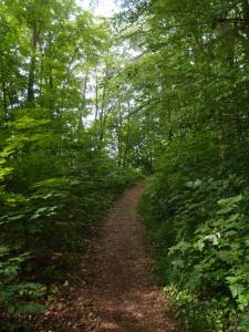 Auf dem Pfad kann man schon mal ein paar Meter mehr laufen :)