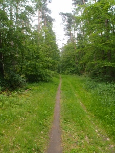 Im Naturpark Spessart unterwegs