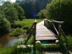 Über ein sumpfiges Wiesental zwischen zwei Wäldern und den Fluss führt ein Holzsteg