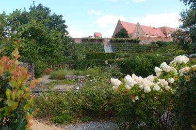 Schöner Seepark in Prenzlau (der Landesgartenschau zu verdanken)