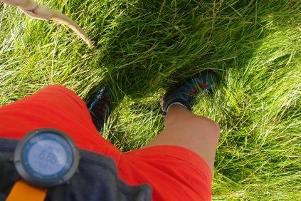 Dichtes Gras, zum Teil über Knie hoch, macht das ganze etwas anstrengend...